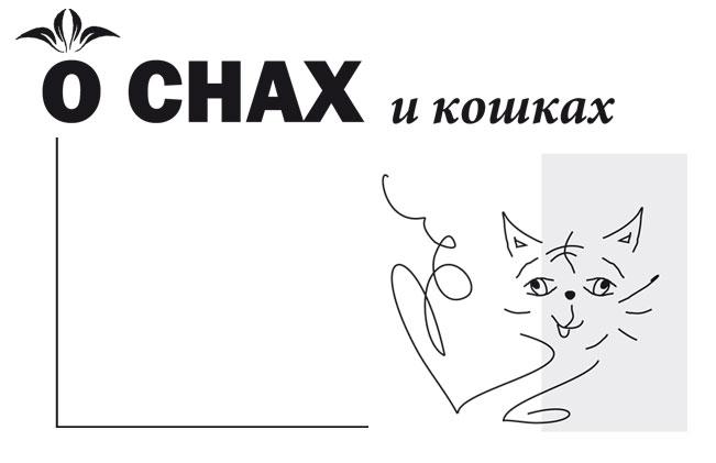 о снах и кошках